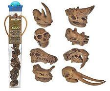 Prehistoric Mammal Skulls/Safari Ltd/toob/683604