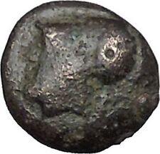 Elaia in Asia Minor 4th-3rdCentBC Ancient Greek Coin Athena Corn-grain  i49052