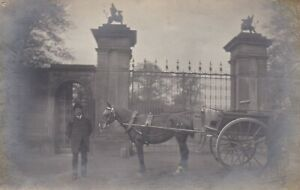 OLD PHOTO MEN WORK HORSE CARRIAGE TRAP ANIMAL COUNTRY GATES W6