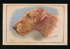 Dog J Salmon Single Collectable Animal Postcards