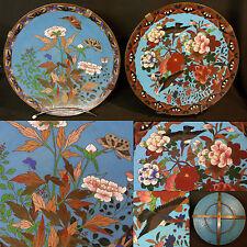 A 1850 Chine rare paire plats 30cm cloisonné émail émaux oiseaux jardin cuivre