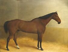 Fine 19th Century English Bay Hunter Horse Stable Portrait Antique Oil Painting