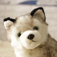 "Realistic Husky Dog Plush Toy Stuffed Animal Soft Wolf Cute 7"" Pet Kid Gift U6U8"