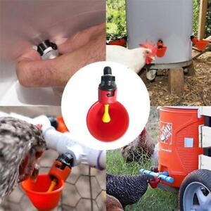 New Automatically Poultry Water Drinking Cups- Chicken Bird Plastic Water Feeder