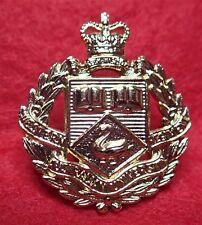 Western Australia University Regiment  Gold Anodised Left Facing Collar Badge
