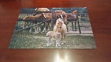 "Rose Art Kodak Kodacolor kidz Puzzles, ""Horsin' Around"", puzzle jigsaw 2004 CIB"