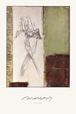 Julian Marcoux Iris II Poster Stampa d'Arte Immagine 91x61cm-SPEDIZIONE GRATUITA