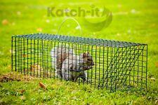 Live Catch Trap - Squirrel, Rabbit, Rat - Galvanised/PVC Coated