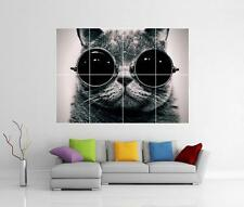 COOL CAT GIANT WALL ART PICTURE PHOTO PRINT POSTER