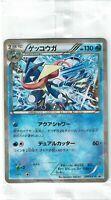2015 Pokemon Card Promo SEALED NEW GRENINJA Prism Holofoil #209/XY-P Japanese