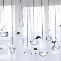 Creative Hanging Glass Flower Vase Planter Terrarium Container Home Garden Decor
