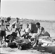 TARANTO c. 1950 - Vendeurs de Moules Italie - Négatif 6 x 6 - ITAL 56