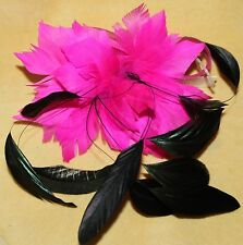 Big Pink Steam Punk Burlesque Feather Tribal Belly Dance Dancing Hair CLIP PIN