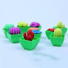 1Pcs Colors Growing Flower Water Swell Growing Toy Kids Gifts Expansion Toys DIY