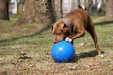 Boomer Ball Indestructible Solid Dog Toy 4 6 8 10 Inch Strong Tough Extra Large
