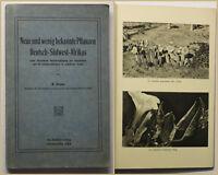 Dinter Neue und wenig bekannte Pflanzen Deutsch-Südwest-Afrikas 1914 Botanik sf