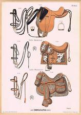 LITHOGRAPHIE ANCIENNE, sellerie Alp. Camille, chevaux, selles équitation