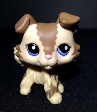 LITTLEST PET SHOP # 2210 COLLIE PUPPY DOG PURPLE EYES TAN BROWN MOCHA Lot 1