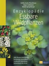 Enzyklopädie Essbare Wildpflanzen von Steffen Guido Fleischhauer, Roland Spiegelberger und Jürgen Guthmann (2013, Gebundene Ausgabe)