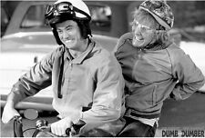 DUMB & DUMBER Movie Poster - B&W Full Size 24x36 Print - Jim Carrey Jeff Daniels