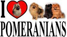 I LOVE POMERANIANS Dog Car Sticker By Starprint - Ft. the Pomeranian