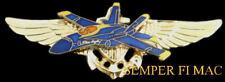 BLUE ANGELS F18 PILOT WING SAN FRANCISCO FLEET WEEK PIN UP US NAVY MARINES BR