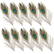 10pcs Elegant Real Natural Peacock Tail Eyes Feathers 10-12 Inches/ 25-30cm US