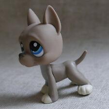Fuzzy Grey Great Dane Pubby dog LITTLEST PET SHOP LPS mini Action Figure toy