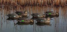 Avian-X Topflight Early Season Teal (6) Six Waterfowl Duck Hunting New!