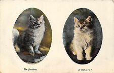 POSTCARD    CATS    The  Book  Lover  Is  that  so  !!!