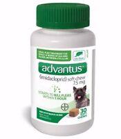 Advantus for Small Dogs (30 Soft Chews) Oral Flea Treatment