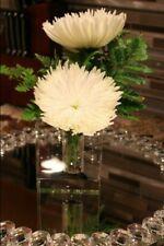 DEBI LILLY CRYSTAL DEMI SQUARE VASE Modern Wedding Centerpiece Party Decor