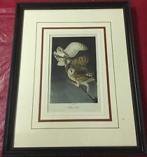 "1840 Royal Octavo First Edition Audobon Print ""Barn Owl"" Plate 34.  J.T. Bowen"