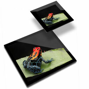 Glass Placemat  & Coaster - Strawberry Poison Dart Frog  #14504