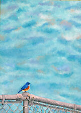 Eastern Bluebird Painting Original Oil Painting on Canvas - Bird Art