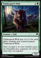 MTG 4x TIMBERPACK WOLF - LUPO DI LEGNOBRANCO - ORI - MAGIC