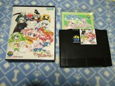 SNK Neo Geo AES Pochi and Nyaa ROM 2003 Converted Item Used Japan F/S SAL
