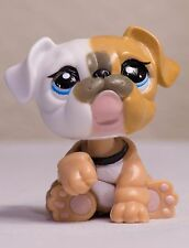 Littlest Pet Shop LPS  #3587 Mommy BullDog Tan brown white blue eyes