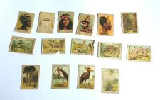 Jacques Super Chocolade Africa Flora & Founa Vintage Belgium collecting cards