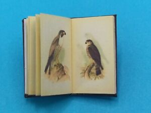 1:12 Scale Book, Hawks and Owls of the USA. 1893, Crafted by K.B