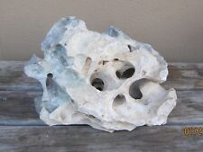 12 LB NATURAL HOLEY LIMESTONE ROCK #6 TEXAS AQUARIUM TERRARIUM BONSAI IKEBANA