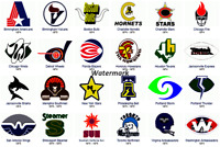 WFL Team Helmet Logo Picture Color 8 X 12 Photo Picture
