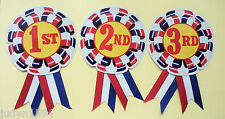 3 AWARD RIBBONS BADGES 1ST 2ND 3RD SPORTING EVENTS PARTY GAMES SPORTS CLASSROOM