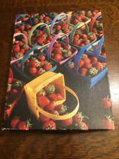Springbok ABOUT A BILLION BERRIES Strawberries 500 pc Puzzle PZL4182 Complete