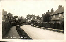 Anlaby Park, Hull. The Paddock # 81.
