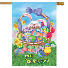 #64 HAPPY EASTER BUNNY RABBIT GOT CHOCOLATE CHICK EGGS HOUSE FLAG 28X40 BANNER