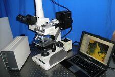 Nikon Optiphot 2 Fluorescence Efd3 Phase Research Microscope