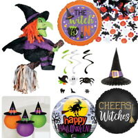 Wicked Witch Halloween Party Supplies Tableware, Decorations, Balloons, Pinata