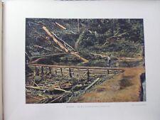 Guyane Française/Gravure 19°in folio couleur/Saint-Elie:le grand Batardeau