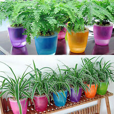 Colourful  Creative Self-watering Flower Desktop Planter Decor Flower Pot Useful